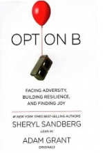 کتاب Option B