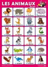 پوستر حیوانات وحشی فرانسه