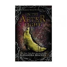 کتاب In the Afterlight - The Darkest Minds 3
