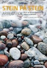 کتاب زبان نروژی استاین پا استاین Stein på stein Arbeidsbok رنگی چاپ دیجیتال